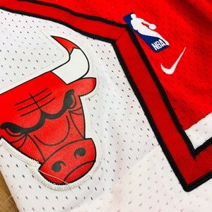 Nike NBA Chicago Bulls Shorts